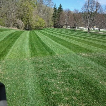 Lawn Care In MN