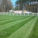 Fertilizing Lawn Care Service